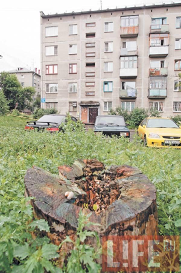 http://donbass.ua/multimedia/images/content/2009/07/30/11d.jpg