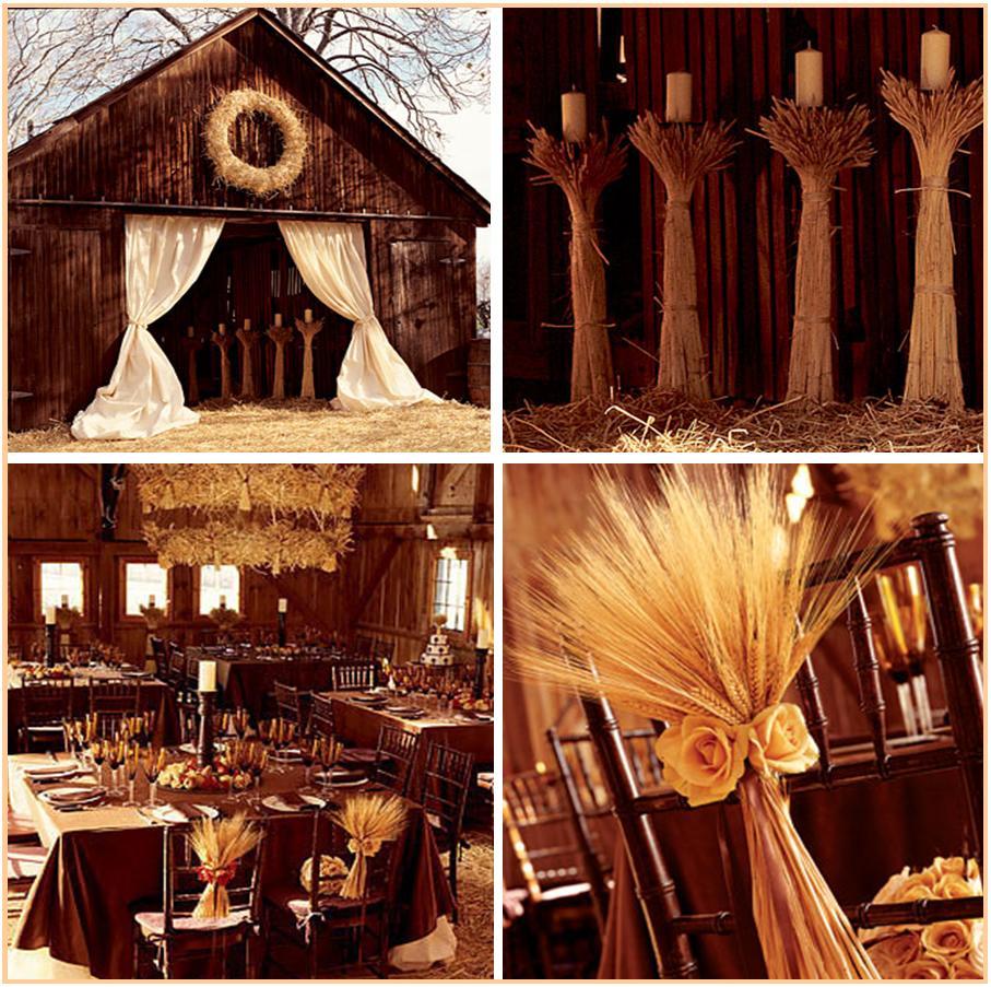 Trigony wedding