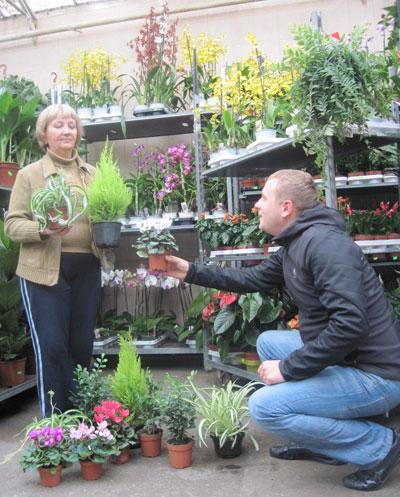 «Цветоведы» Валентина Авдеева и Олег Алпеев подбирают растения для антигриппозной витрины.