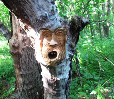 Скульптуры из дерева в Глуховском лесу. Донецкая область. Донбасс. Торез