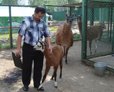 Игорь Асланов, крошка-лама и ее распереживавшиеся родители.