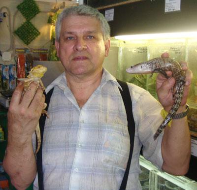 Юрий Чернодуб с удивительными ящерицами: бородатой агамой и синеязыким сцинком.