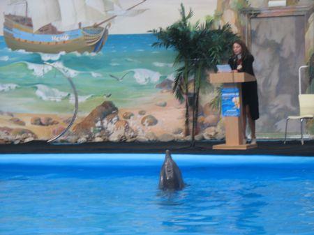 Доклад - дело серьезное, это каждому дельфину понятно.