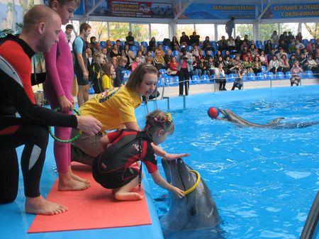 Игра с дельфинами - и есть лечение.