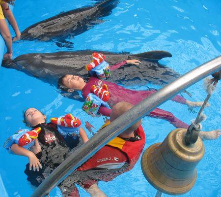 Плавать с дельфинами - одно удовольствие!