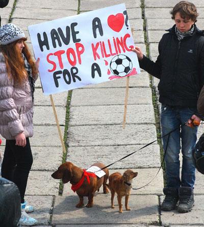 Мариуполь. Домашние питомцы тоже поучаствовали в акции протеста.