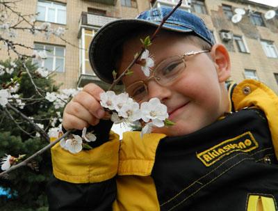 Настоящая весна пришла в наши города с запахом цветущих абрикосов. Одними из первых в Донецкой области они во вторник зацвели в Артемовске, который находится в низине, поэтому защищен от ветров.