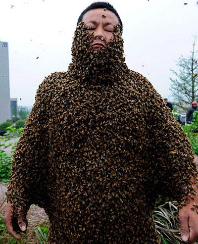 Тело китайского пасечника Ши Пинга облепили более 331 тысячи пчел - это 33,1 кг живого веса. Таким образом он побил мировой рекорд, его предшественник смог разместить на своем теле только 26,8 кг пчел.