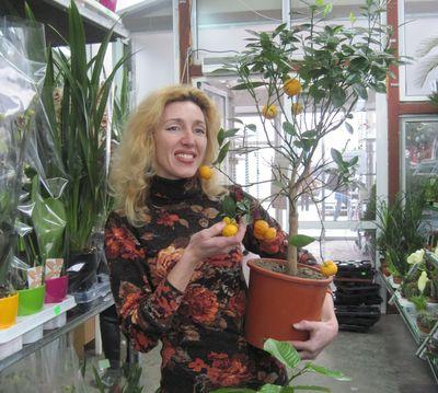 Галина Драган показала аппетитный каламондин.