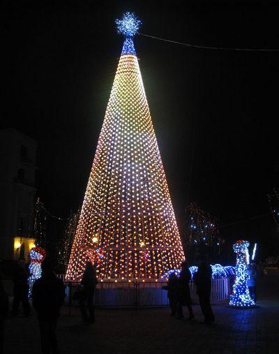 Главная елка Днепропетровска