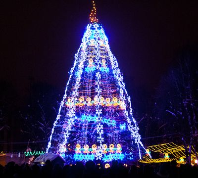 Главная елка Винницы