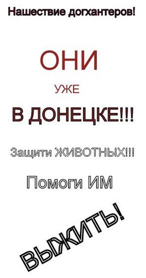 Догхантеры в Донецке. Такие обращения распространяют зоозащитные организации.