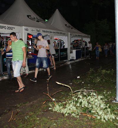 дерево в фан-зоне УЕФА Евро-2012