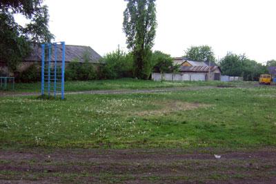 Овчарка покусала школьников. Место происшествия - школьный стадион.