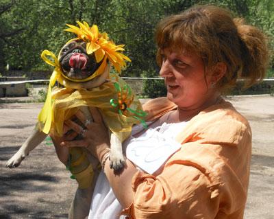 В воскресенье в Донецке на региональной сертификатной выставке собак состоялся показ мод. Самым красивым был признан наряд мопсихи Мани