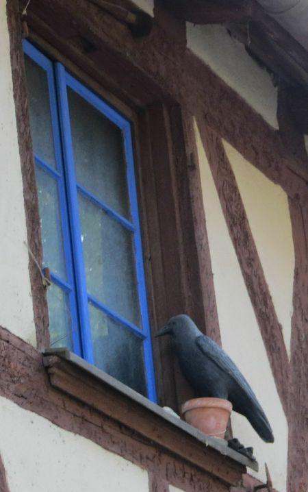 Ворона, отпугивающая голубей, на одном из самых старых домов Нюрнберга.