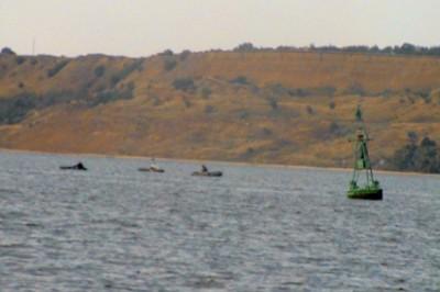 мариупольский рыболовный сайт