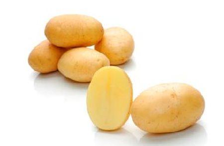 Миранда - ранний сорт, устойчивый к гнилям клубней и ботвы. Не боится  нематоды и картофельного рака. Хорошо хранится. Урожайность - 520 ц/га.