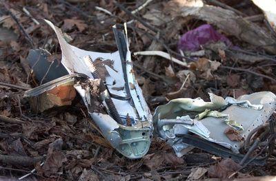 Под Смоленском рухнул самолет с президентом Польши. Все погибли (ФОТО)