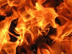 В Житомирской области при пожаре в частном доме погибли дети
