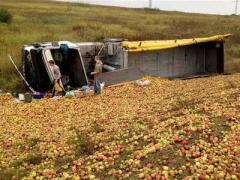 """""""Фруктовое"""" ДТП: на трассе Киев-Чоп перевернулся грузовик с яблоками (ФОТО)"""