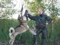 В Макеевке соревнуются охотничьи собаки