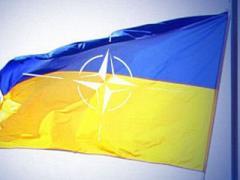 Генсека НАТО порадовала высокая явка на украинских выборах