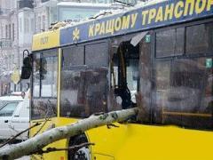 В Киевской области снежный апокалипсис. Объявлена чрезвычайная ситуация (ФОТО)