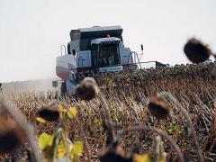 В Донецкой области собрали весь урожай и заканчивают сеять озимые