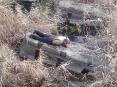 Мужчина чудом выжил после падения с дамбы Кураховской ТЭС
