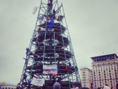 """""""Неприкаянная"""" киевская ёлка нашла своё место. Новый год будет! (ФОТО)"""