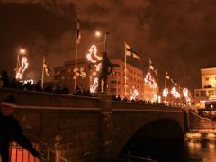 Столица разгромлена: горячие финские парни отметили День независимости