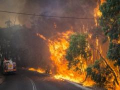 Пожарные не могут остановить огонь: большой город в опасности (ВИДЕО)