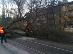 Стихия ударила по Донецку, парализовав движение трамваев и автомобилей (ФОТО)