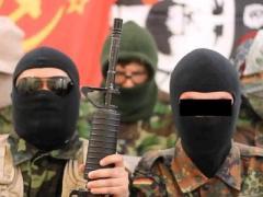 Украинцы поиздевались над боевиками и создали Луганскую Федерацию (ВИДЕО)