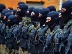 """Бойцы """"Азова"""" и """"Украины"""" ликвидировали базу вооружённых протестующих (ВИДЕО)"""