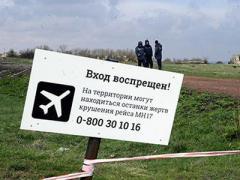 На Донбассе обнаружили новые останки жертв падения малайзийского «Боинга»