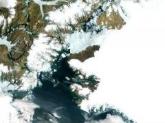 Пыль с Камчатки растопит Арктику,  - британские ученые