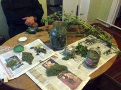 В Мариуполе нашли наркотические залежи