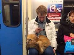 Сегодня в киевском метро был замечен необычный пассажир (ФОТО)