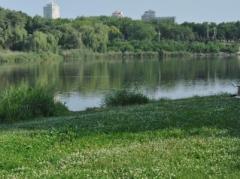 """В """"ДНР"""" заявили, что экология значительно улучшилась по сравнению с довоенным периодом."""