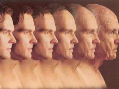 Ученые выявили пять факторов, которые помогут человеку прожить больше 100 лет