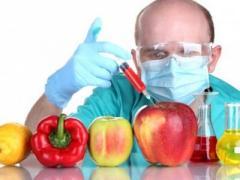Академия наук США признала ГМО-продукты безопасными