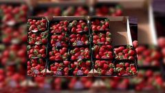 """Украинская клубника попала в России под """"санкции"""""""