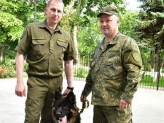 У полиции Донетчины появится кинологический центр, Аброськин приглашает к сотрудничеству