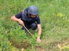 Піротехніки вилучили та знешкодили на Донеччині 7 вибухонебезпечних предметів