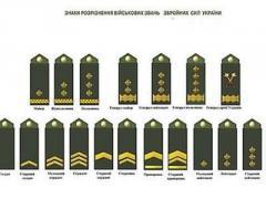 Долой советские звезды с погон: Порошенко утвердил новые знаки различия в армии