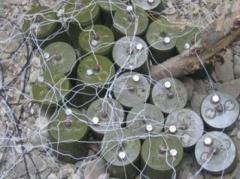 """Бойовики """"ДНР"""" підірвалися на власних мінах: шість загиблих"""