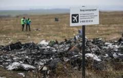 Нидерланды не дали России доступ к материалам следствия по сбитому над Донбассом Боингу