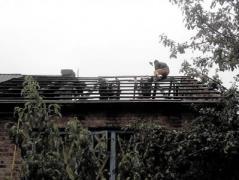 Боевики обстреляли Зайцево из запрещенного оружия, снаряд разрушил жилой дом (ФОТО)